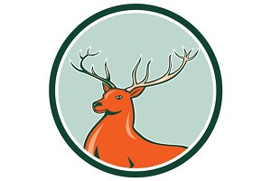Red Stag Deer Side Circle Cartoon