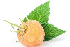 yellow raspberries with leaf isolated on white background macro
