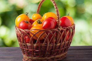 red and yellow tomatoes in a wicker basket on wooden table with blurred green background