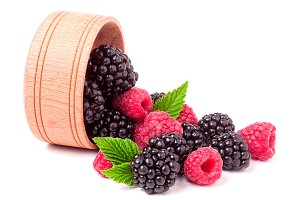 blackberries and raspberries spilled from wooden bowl isolated on white background