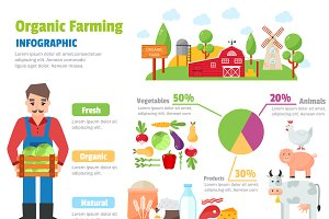 Organic farm infographic vector set