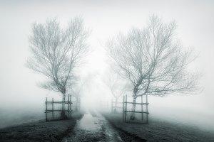 Path to nowhere II