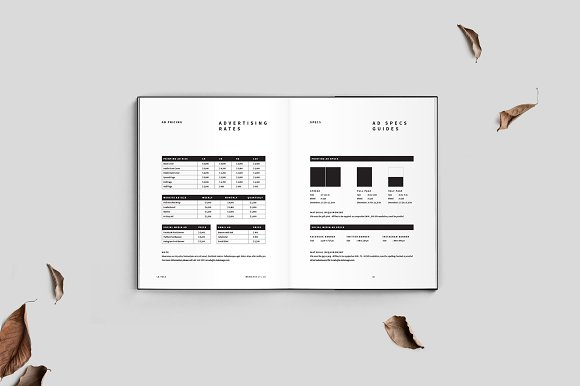 Magazine Media Kit and Identity in Brochure Templates - product preview 5