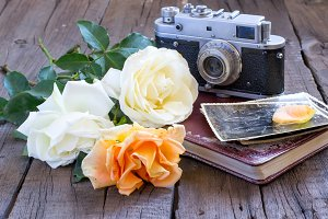Roses, family photos and old camera