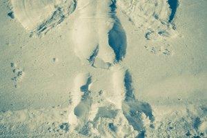 Snowy Angel