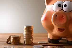 Closeup piggy bank grey background