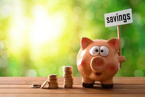 savings billboard piggy bank nature