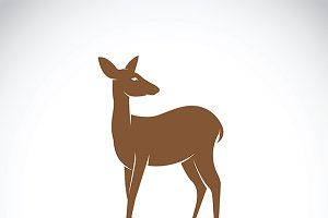 Vector of a deer design