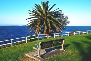 Palm View in Cronulla