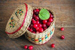 basket of cranberries