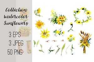 №2 Collection Watercolor Sunflowers