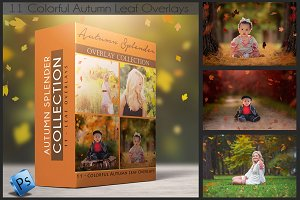 Leaf Overlays - Autumn Splender