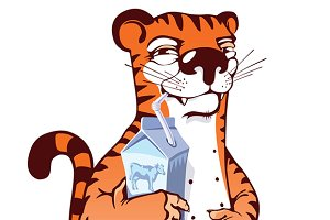 Sly Tiger Drinking Milk