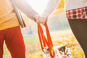 Closeup on young couple holding leash together in autumn park