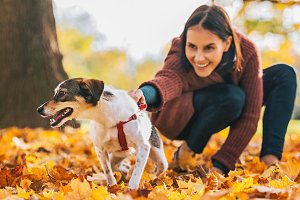 Closeup on cheerful dog and young woman holding it outdoors in autumn