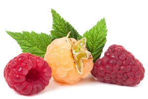red and yellow raspberries with leaves on a white background