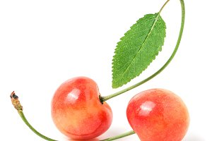 Two cherries with leaf closeup isolated on white background