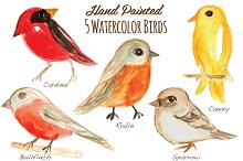 Watercolor Birds Clipart Handpainted