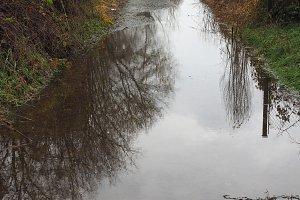 Pond in street