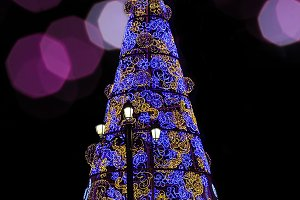 Decorated christmas tree at night