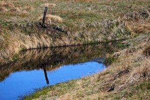 Water in a Meadow