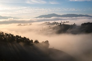 Misty aerial view in morning
