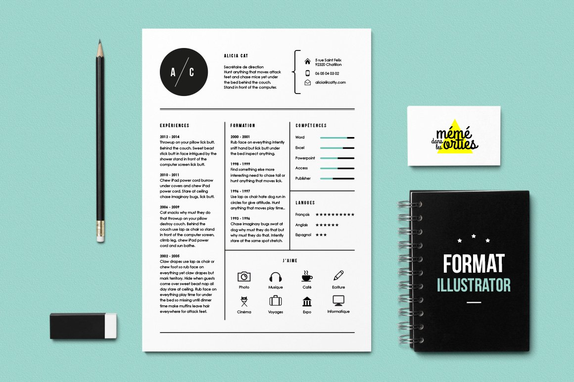 cat resume template illustrator resume templates creative market. Black Bedroom Furniture Sets. Home Design Ideas