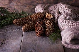 Cones, Christmas still life.