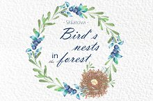 Bird's nests in the forest, vol. 1