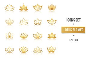 Lotus golden symbols vector set
