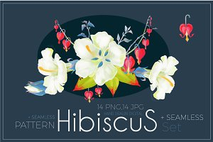 Hibiscus Flower Set. Png,Jpg
