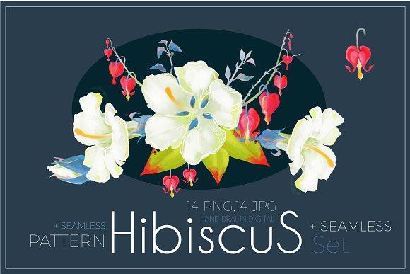Hibiscus Flower Set. Png,Jpg