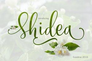 Shidea