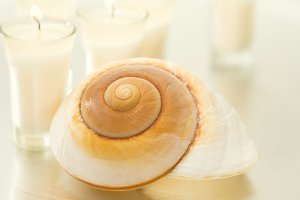 Home Decor - Candles and Seashell