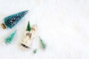 Christmas Trees Stock Photography