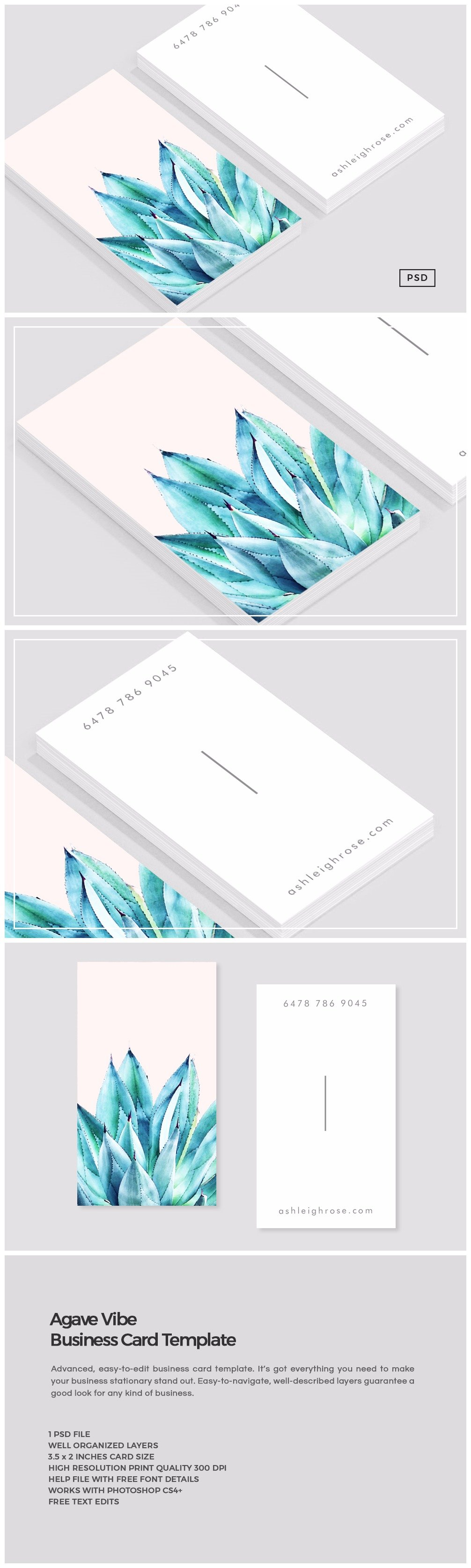 Agave Vibe Business Card Template Business Card Templates - Business card print out template