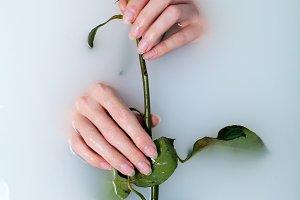 woman taking rose