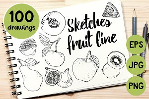 Sketches fruits line
