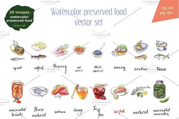 Watercolor Preserved Food