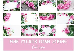 STOCK Photo BUNDLE. Pink Peonies.