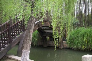 bridge to happiness