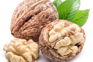 Walnut and walnut kernel isolated