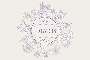 Flowers, Hand drawn Vector