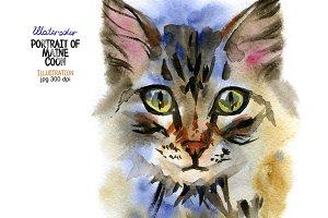 Watercolor Maine Coon cat