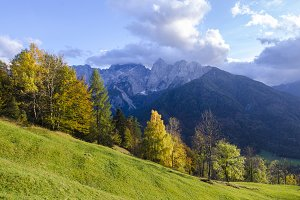 Mountains Forest, Landscape, Meadows