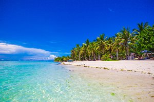 Beautiful tropical beach with palm trees, white sand, turquoise ocean water and blue sky