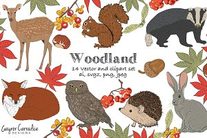 Woodland nature vector clipart set