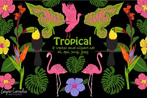 Tropical vector set with 8 x clipart