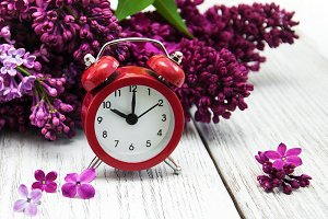 Lilac flowers with alarm clock