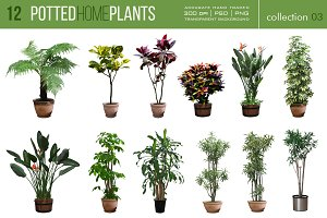 12 Potted Home Plants vol.3